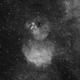 Gum39 in Ha and Starless Ha,                                TWFowler