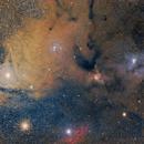 Zona Nebular de Rho Ophiuco,                                comiqueso