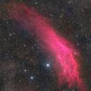NGC1499(Four mosaics),                                Rabbit Zhang