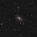 NGC2403,                                Kai Westhöfer