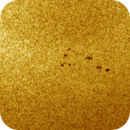 Sunspot AR2737 & Convection Cells, Colored, 04-03-2019,                                Martin (Marty) Wise