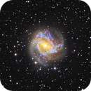 Southern Pinwheel M83 (Cropped),                                Leandro Fornaziero