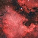 NGC7000 and IC 5067,                                Michael