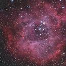 Rosette Nebula,                                Sean Heberly