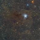 Iris Nebula,                                CLK_Connie