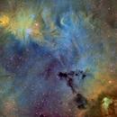 Cone and Fox Fur Nebulae - Hubble Palette,                                Eric Coles (coles44)