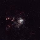 NGC 2070 - The Tarantula Nebula,                                Greg Sleap