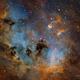 TadPoles Nebula (IC410) close up in SII/Hα/OIII/rgb,                                Jose Carballada