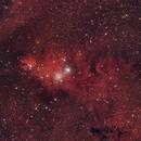 NGC2264,                                oboeins