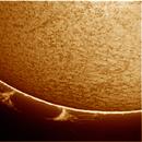 sol 28-8-2015,                                jose