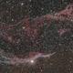NGC 6960 Western Veil mosaic,                                James Pelley