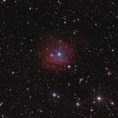Sh2-313,                                Morris Yoder