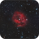 Cocoon Nebula (IC5146),                                Gabriel Cardona