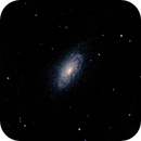 NGC 3521,                                Vijay Vaidyanathan