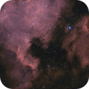 NGC 7000: North America Nebula,                                John Michael Bellisario