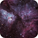 Carina Nebula, NGC 3372,                                Shane Hunter