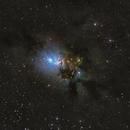 NGC 1333 in Perseus,                                pete_xl