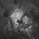 NGC 7000 Ha,                                Stefan Schimpf