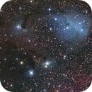 IC 447,                                Max Mirot