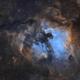 NGC 7000 & Surroundings - SHO,                                Jonas Illner