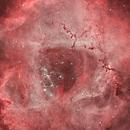 Rosette Narrowband Closeup,                                Scott Tucker