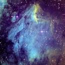 IC 5070 Pelican Nebula,                                Steffen