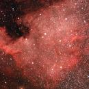 North America Nebula,                                Jason Kaufman