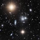 Hydra galaxy cluster,                                Claudio Tenreiro
