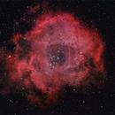 NGC2244 - The Rosette Nebula,                                Barry E.
