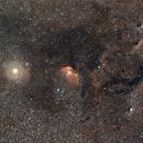 SH2-101 Tulip Nebula within Cygnus Star Cloud,                                AstroJoeHSV