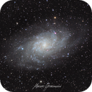 Messier 33 Triangule Galaxy,                                Maicon Germiniani