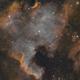 NGC7000 and IC5070 LSHO,                                John Massey