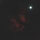 The Flame Nebula,                                Jon M. Sales