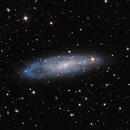 """NGC 247,                                Sebastian """"BastiH..."""