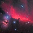 Horsehead and Flame Nebulae,                                1074j