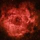 NGC2244 & Rosette Nebula in HaRGB,                                JKnight
