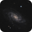 NGC 2998 Galaxy Group,                                Gary Imm