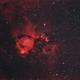 Head Fish nebula,                                Joan Riu