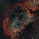 IC1848 Soul Nebular,                                Anders Quist Hermann