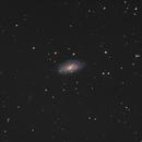 NGC 3953,                                jelisa