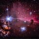 The Horsehead Nebula (Barnard 33) and the Flame Nebula (NGC 2024),                                Lopes Maicon
