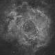 Rosette Nebula in H-alpha,                                Orestis Pavlou