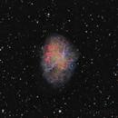 M1 the Crab Nebula, an ArtL,RedHa-GreenOIII-BlueOIII image,                                Niels V. Christensen