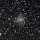 IC342,                                Jan Curtis