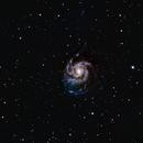 Messier 101 The Pinwheel Galaxy,                                Norm Fox