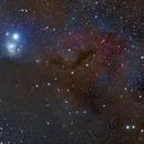 IC 348,                                GeorgeA