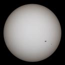 The Sun is white,                                SamuelLG