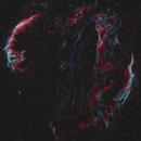 The Veil Nebula in Cygnus,                                Dave Boddington