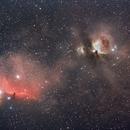 the Horsehead and Orion nebula,                                Steve Coates