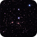 Like Fleas, Galaxies,                                PJ Mahany